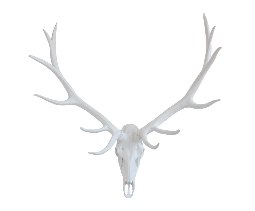 Resin Stag Skull Wall Decor