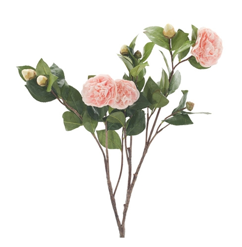 Camellia, Light Pink, Home Accessories, Laura of Pembroke