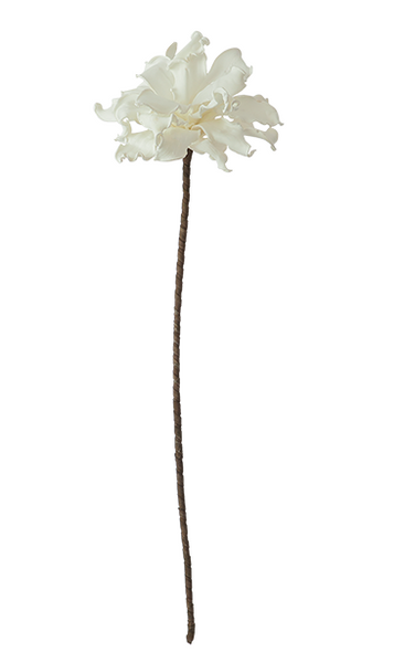 White Long Stem Flower, Home Accessories, Laura of Pembroke