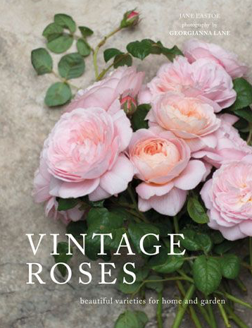 Vintage Roses Book, Gifts, Laura of Pembroke