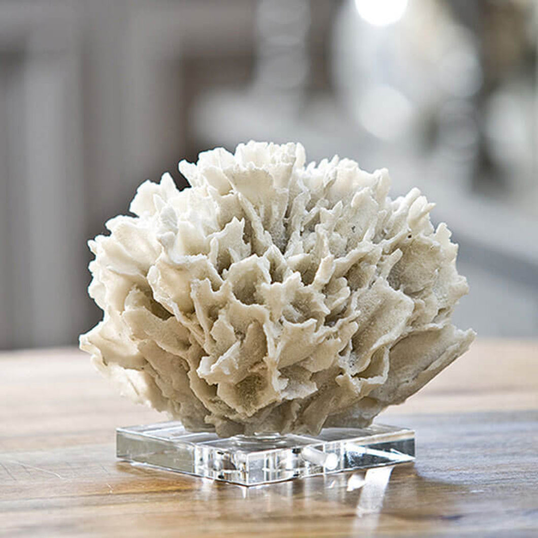 White Coral Ribbon, Home Accessories, Laura of Pembroke