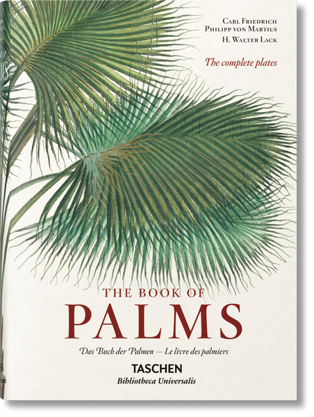 Martius The Book Of Palms Book