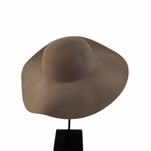 Primary Photo - BRAND: CLUB MONACO STYLE: HAT COLOR: TAUPE SKU: 160-160219-2694