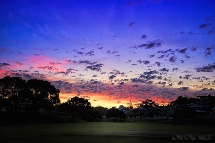 Abbett Park Sunset