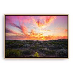 Warm, magenta sunset at Mullaloo Beach in Perth, Western Australia framed canvas in raw oak