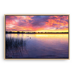 Sunset over Lake Monger in Perth, Western Australia framed canvas in raw oak