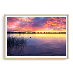 Sunset over Lake Monger in Perth, Western Australia framed in raw oak