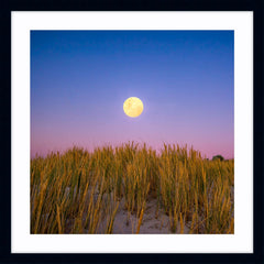 Moon rising over the sand dunes of Mullaloo Beach on New Years Eve in Perth, Western Australia framed in black