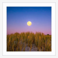 Moon rising over the sand dunes of Mullaloo Beach on New Years Eve in Perth, Western Australia framed in white