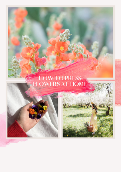 How To Press Flowers At Home