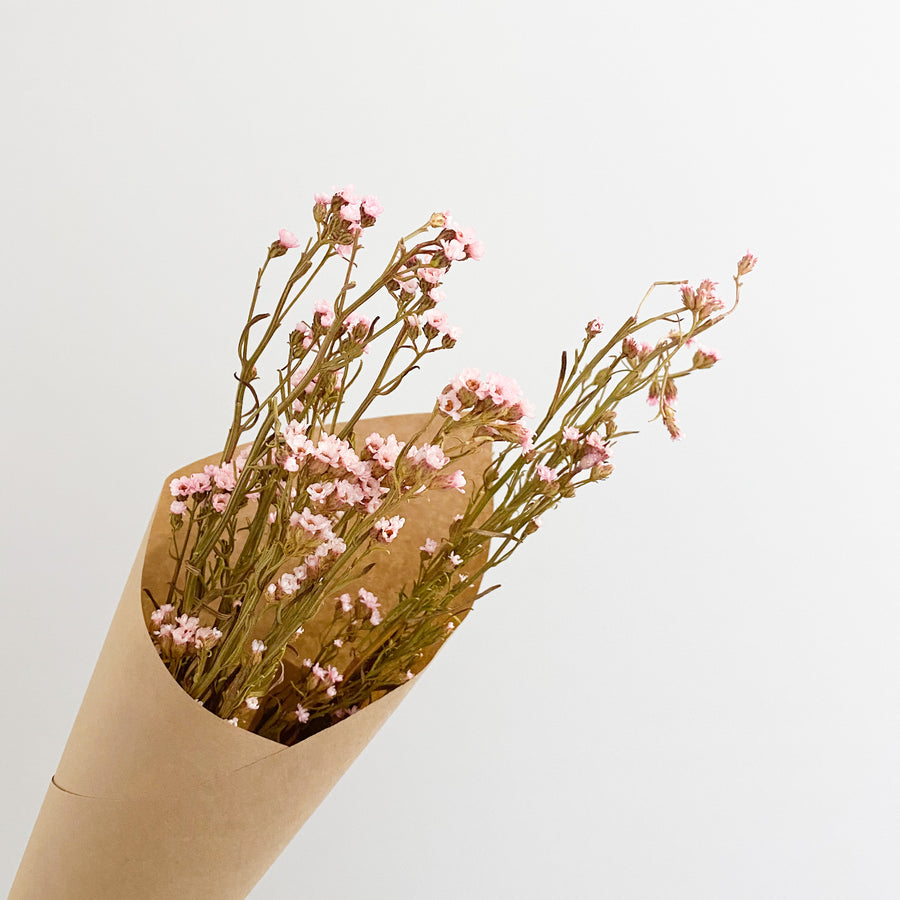 Dried Daisy Bunch - Pink