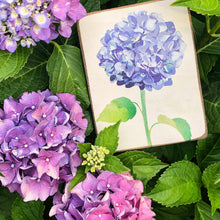Load image into Gallery viewer, Blue Hydrangea Decorative Wooden Block