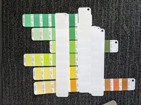 Brainstorm Mural for Whole Foods - Paint Swatches