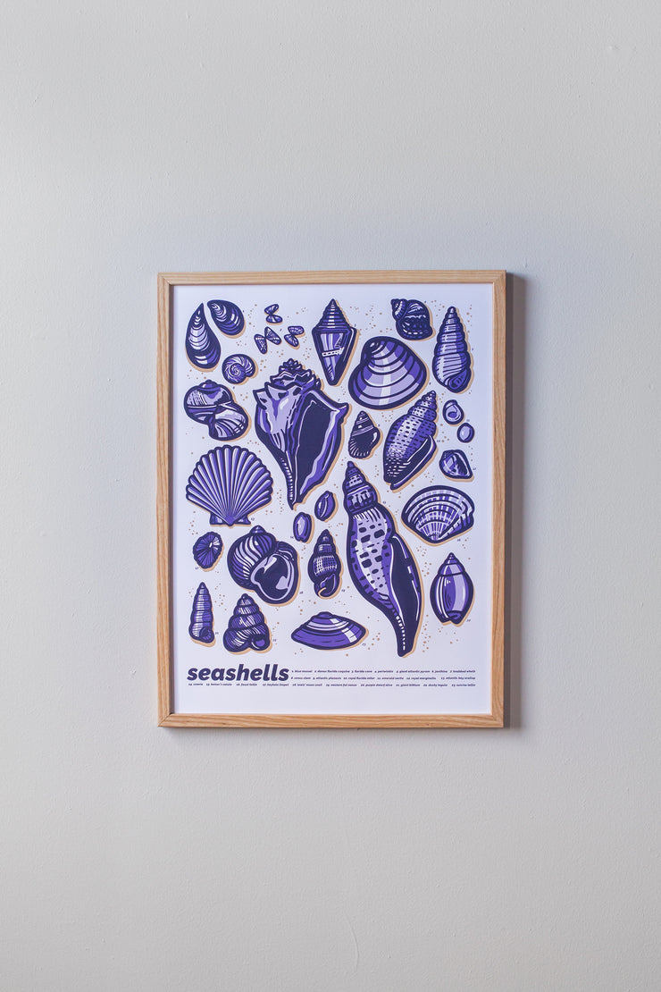 Seashells Print in Light Frame by Brainstorm