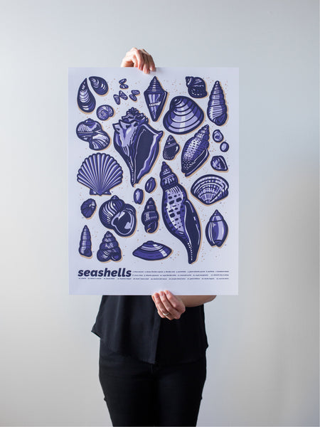 Seashells Print by Brainstorm