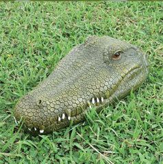 Remote Control Crocodile