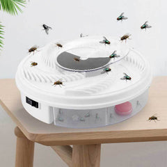 Fly Trap Device with Trapping Food