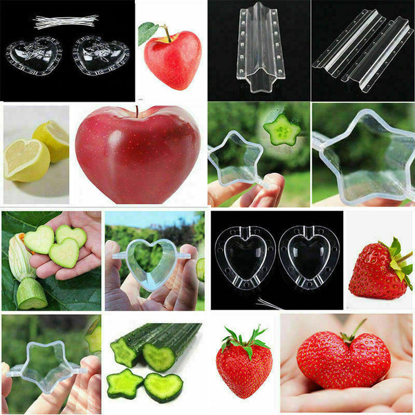 Fruit Shaping / Forming Mold