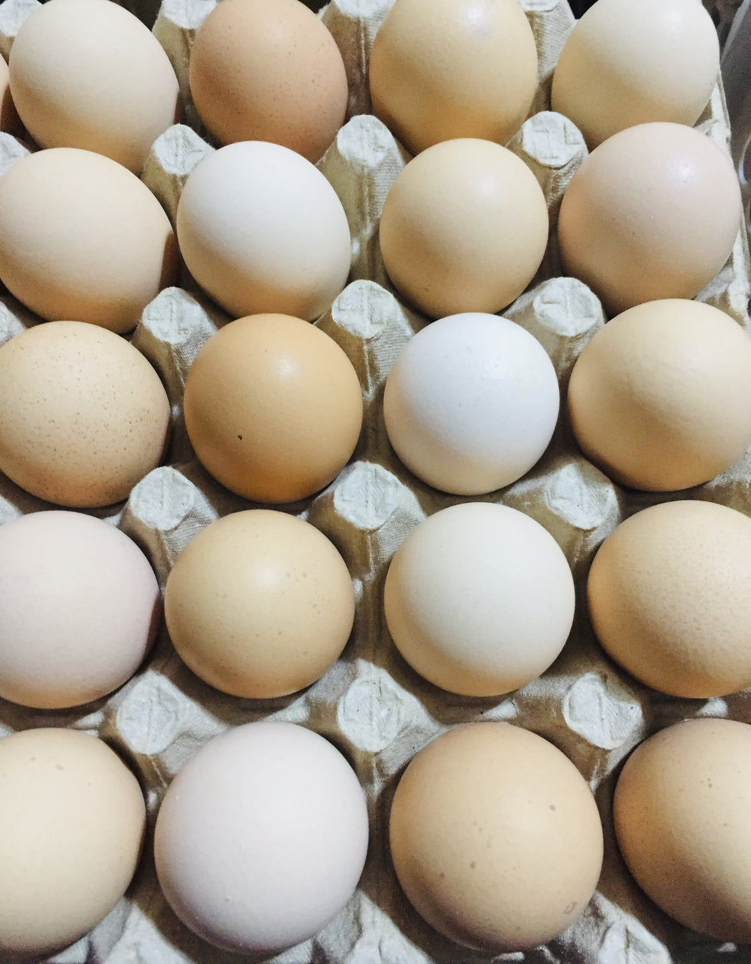 Eggs Brown Organic XL  30's