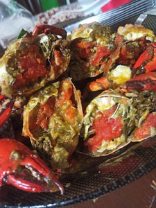 Live Mud Crabs Medium (4-5 pcs per kl)