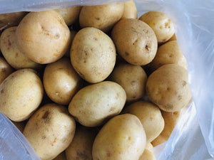 Potato Medium .5kg pck
