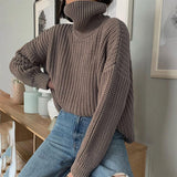Women's  Knitted Turtleneck Sweater Oversize Pullover Long Sleeve Elegant Solid Warm Sweaters 2020 Winter Female Jumper Tops