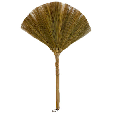 Plain broom (walis)