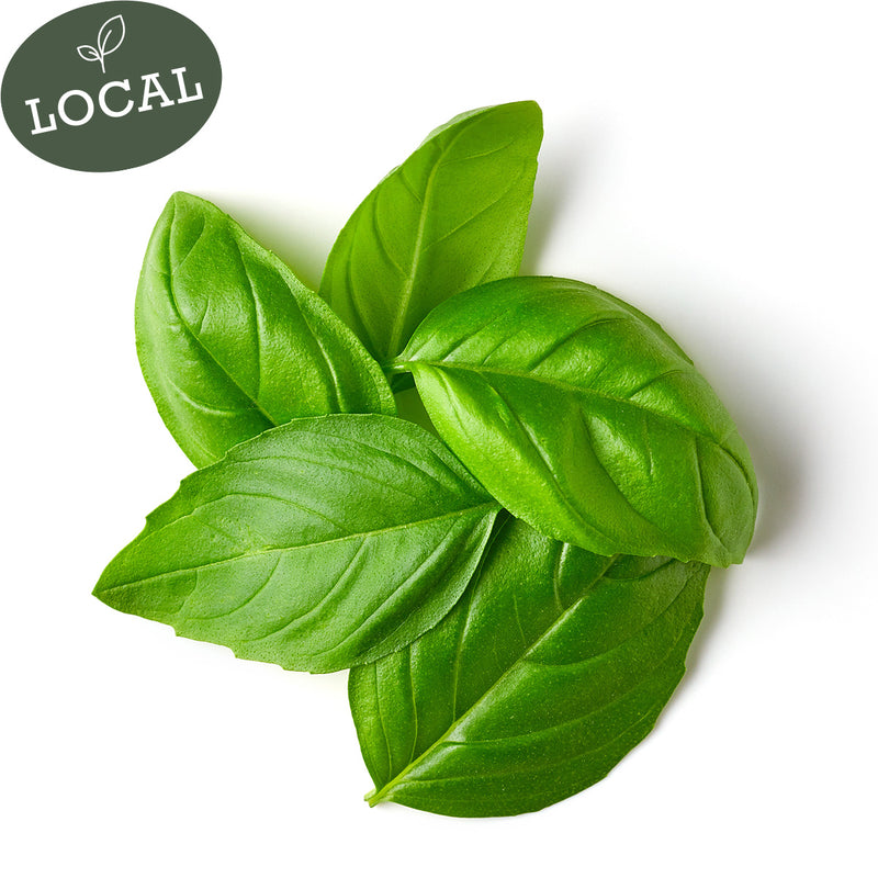 2 oz. Fresh Cut Basil