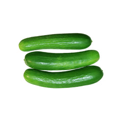 12 oz Cucumber Persian Mini - Organic