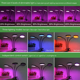 CMC, Full Spectrum Phytolamps DC 5V USB LED Grow Light 3W 9W 15W 18W 27W 30W 45W Desktop Clip Phyto Lamps for Plants Flowers Grow Box