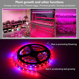 CMC, LED Strip Light 5050 DC12V Phyto Tape for Plants DIY Grow Lamps Waterproof Phytolamp for Greenhouse Hydroponic Plant Growing