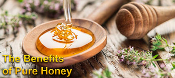 The Benefits Of Pure Honey