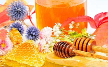 What is the Best Honey?