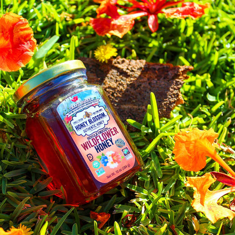 the jar of Wildflower honey on grass and several flowers around it, in a sunset