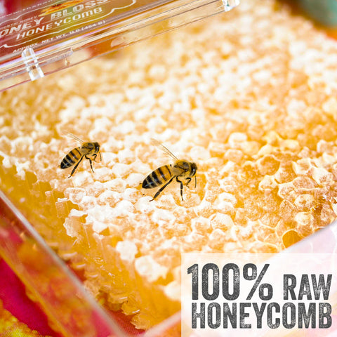 Honey Blossom 100% Pure Raw Real Honeycombs