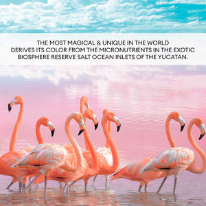 Pink Flamingo Sea Salt ALL Natural Health Immunity Booster