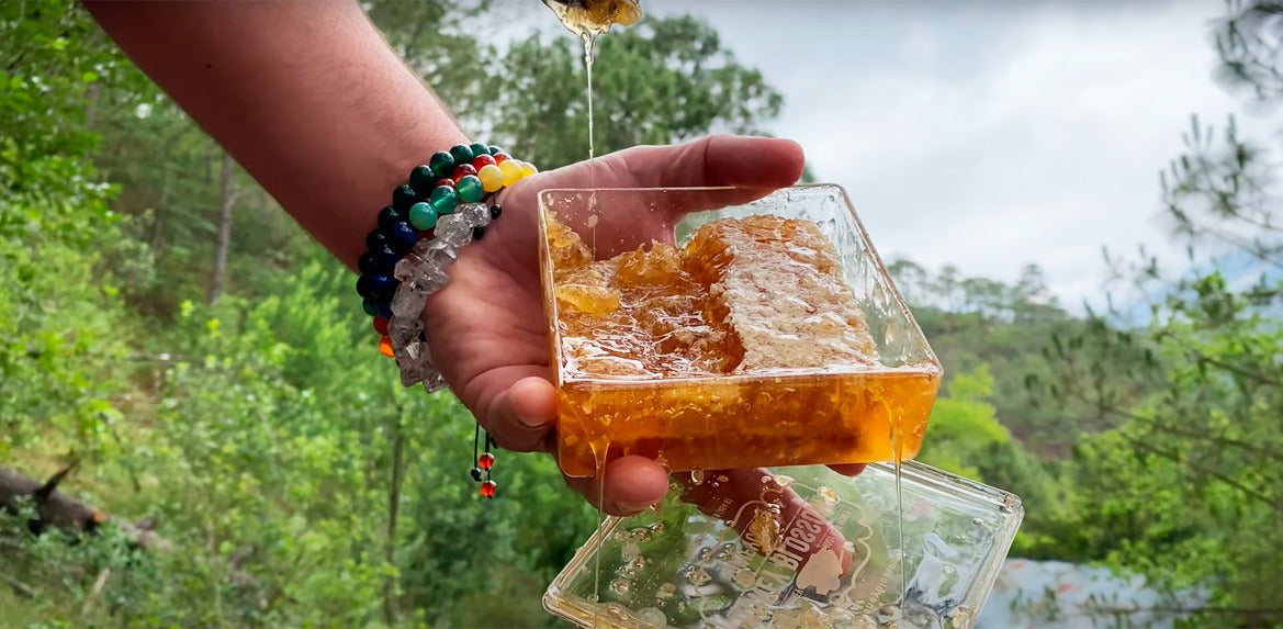 Video of a hand with several bracelets, holding the honeycomb box open, showing the honeycomb to the camera and cutting pieces of it and dropping its honey