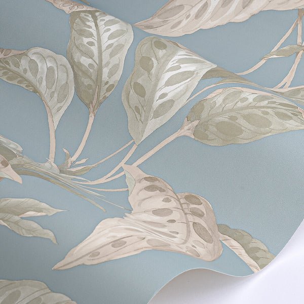 Tropicane by Paint & Paper Library - Sea Nor Sky Wallpaper
