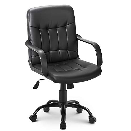 LIFE CARVER Medium Back Desk Chair