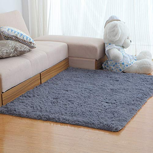 LOCHAS Area Rugs for Living Room, Fluffy