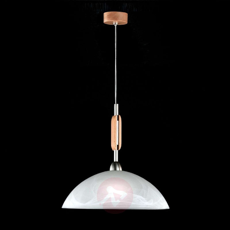 Pinza Hanging Light Modern
