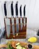 French Home 5 Piece Laguiole Kitchen Knife Set - LG041