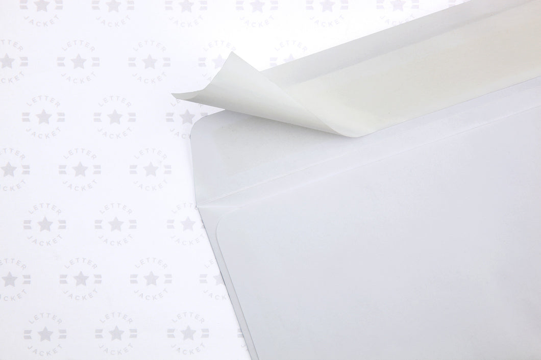 6 X 9 Booklet Envelope with Self Seal Adhesive
