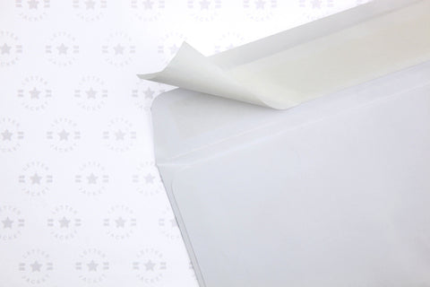 #10 Custom Printed Regular Self Seal Envelope