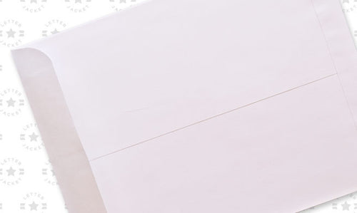 10 X 13 Catalog 28# White Wove Regular Gum Envelope