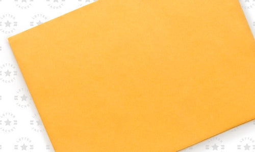 9 x 12 Catalog Envelope 28# Brown Kraft with Peel & Stick (custom printed or plain)