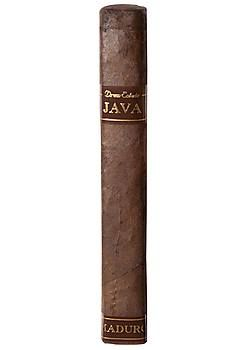 Java by Rocky Patel Robusto Maduro