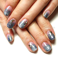 Steel Gray Holographic Glitter Dust Powder / Sparkle Powder / Nail Art Craft (BL08)