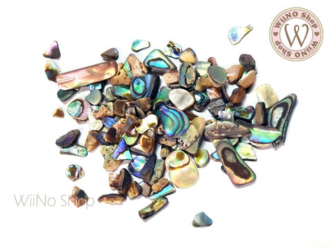 Abalone Natural Gemstones