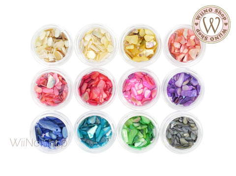 Color Shell Natural Gemstones